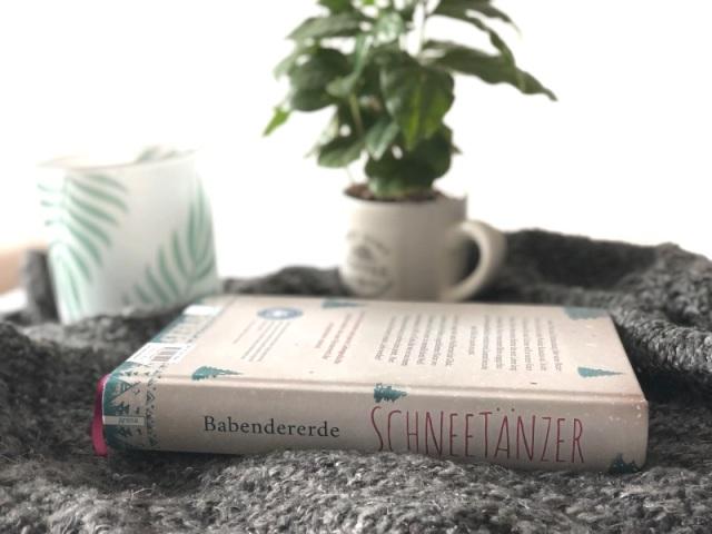 babendererde-schneetänzer-2