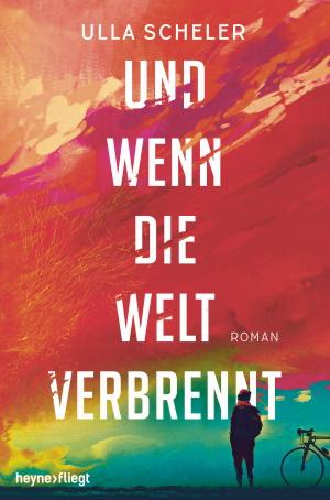 Cover von Und wenn die Welt verbrennt von Ulla Scheler.